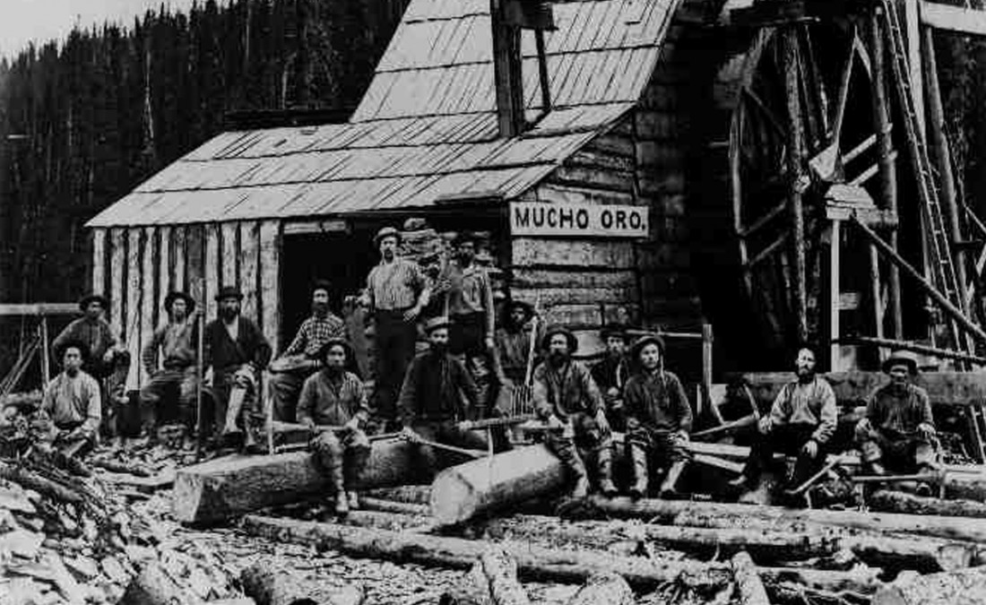 british columbia gold rush essay In 1864 vancouver island had its own brief gold rush creating leechtown the original cairn commemorating the boomtown has long vanished with a team of volunteers and supporters vipma (the.